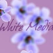 Весенний редизайн сайта White Media
